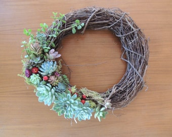 "Succulent Holiday Wreath 14"" Diameter"