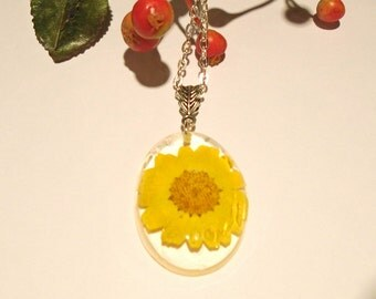 Pressed Flower Yellow Daisy  Wildflower Resin Pendant Necklace