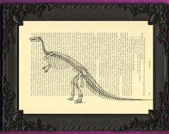 Dinosaur decor, dinosaur collector gift idea, dinosauria scientist wall art, dinosaur art print digital, dino drawing for boys room