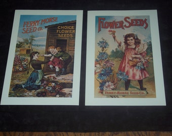 2 Replica Ferry-Morse Seed Co prints,small posters,6 inch by 10 inch,decoupage,scrapbook