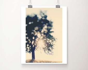 tree photograph sunset photograph nature photography gold home decor cream wall art tree print nature print dusk photograph