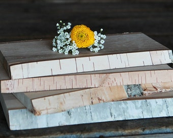 BIRCH Planks (6 per box)