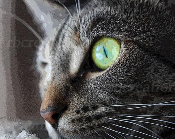 Close up Tortoiseshell Cat Photograph Fine Art Print