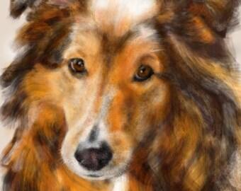 Custom Dog Pet Portrait, pet portrait, custom portrait, dog art, dog lover, pet memorial, sheltie, dog memorial, artwork, dog, art print