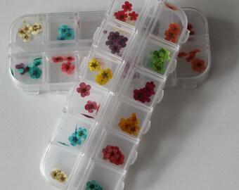 50 pcs 12 colors tiny dried flowers kit  set for glass bottle vial tube filled
