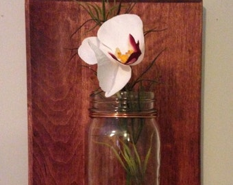 Wall Mounted Mason Jar Vase