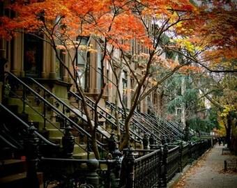 Autumn In Brownstone Brooklyn New York - New York Architecture - Autumn New York  - Fall Foliage - New York Street Art - New York Landscape