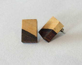 Guitar Wood Earrings, Cocobolo Rosewood showing natural sapwood and heartwood, large stud earrings, Eco-Friendly, Upcycled