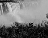 Niagara Falls - Gorgeous Black and White Photo