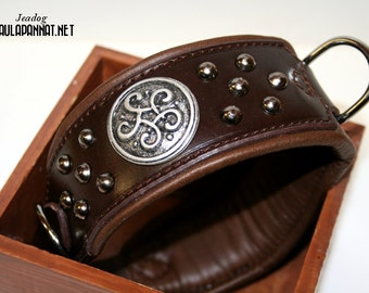 Leather Dog Collar, decorated with Celtic Conchos and Studs