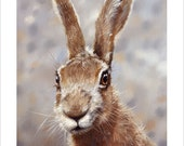 HARE Wildlife Portrait by award winning artist John Silver. Personally signed A4 or A3 size Print. HA005SP
