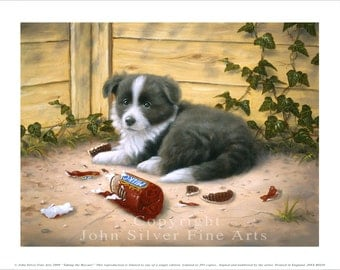 Border Collie Puppy, Biscuits. Limited Edition Print. Personally signed and numbered by Award Winning Artist JOHN SILVER. jsfa039