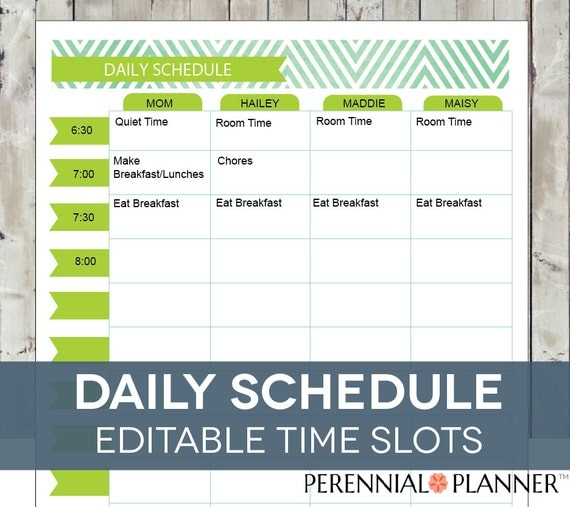 daily schedule hourly printable editable by perennialplanner. Black Bedroom Furniture Sets. Home Design Ideas