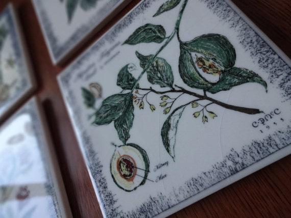 Four Vintage Mccormick Ceramic Spice Tiles 1950 S