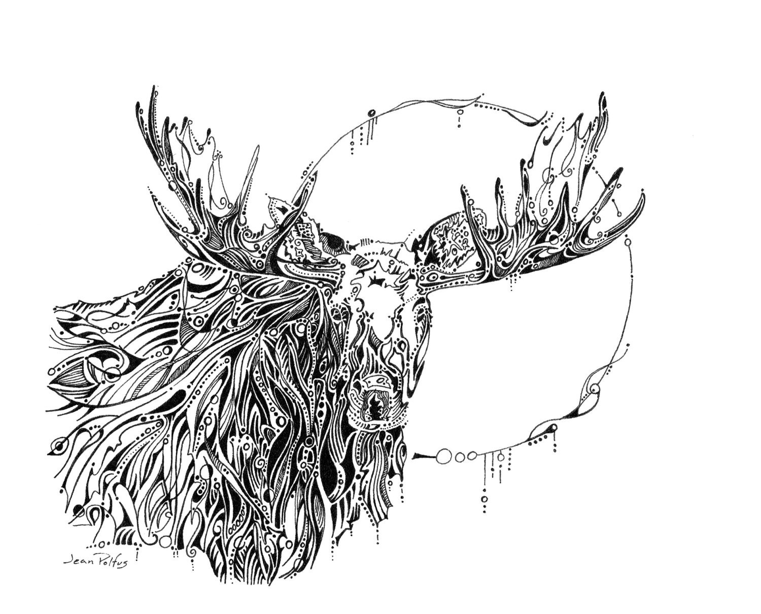 Line Drawings Of Woodland Animals : Moon moose drawing bull illustration woodland