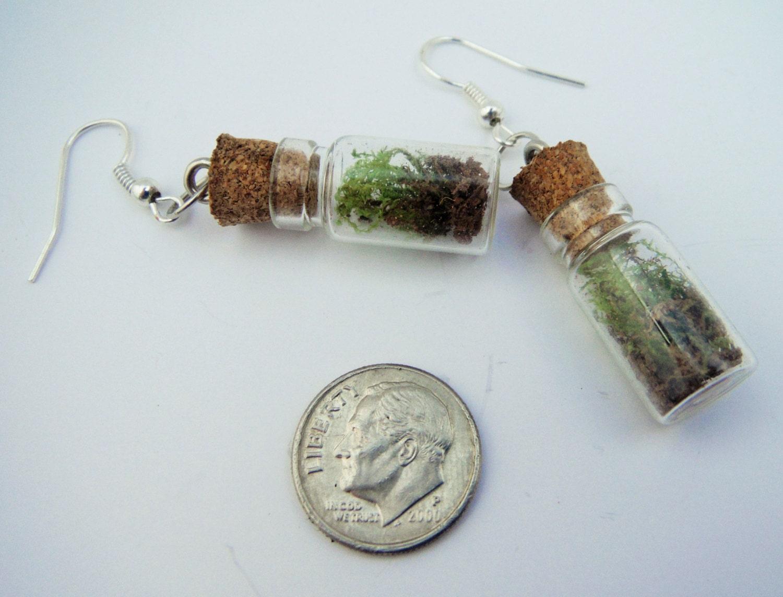 terrarium jewelry terrarium earrings by stoneycreekboutique