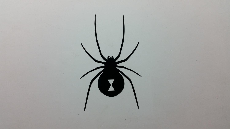 Symbolism Of Black Widow Spider Black Widow Spider A Spider