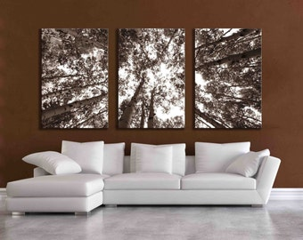 Three large multi panel wall art aspen 20x24 inch or 24x36 canvas print sepia forest nature home decor huge wall hanging pine tree art