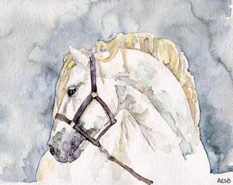 """Horse Painting - Print from my Original Watercolor Painting, """"Just a Silver Stallion"""", Mustang, White Horse, Horse Art, Horse Decor"""