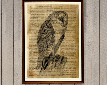 "Shop ""owl gifts"" in Art & Collectibles"