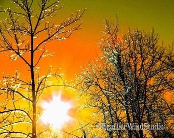 Sunset Photography | Ice Crystals on Trees | Icy Winter Sparkles | Sunrise | Yellow Orange Sky Wall Art | Altered Photo Art | Sunset Print