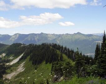 Nostalgic Mt Rainer - Washington