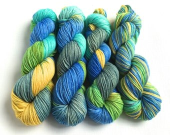 Hand Dyed Yarn--Parakeet on 100% Superwash Worsted Merino