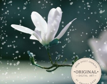Snow Photo Overlays - Bokeh Overlays, Bokeh Photo Overlay, Snow Effect, Snow Overlay, Bokeh Frames, Bokeh Borders, Snow Borders