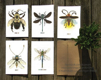 Set of 5 Flying Bug Insect Greeting Cards, Nature, Bumble Bee, Damselfly, Firefly, Owlfly, Green Darner Dragonfly, Notecards, Birthday Cards
