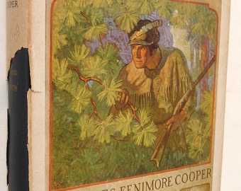 coopers deerslayer view of the native americans Cooper's knowledge of the indians depended upon his having lived among them  in the  country, the indians returned to view the blackened ruins of their  ancestral homes  (1826) and thirteen years before writing the deerslayer ( 1841).