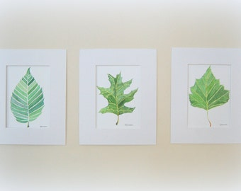 Set of three leaves, 5X7 leaf prints, leaf set leaf painting watercolor wall art watercolor leaves watercolor painting watercolor leaf art