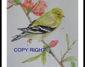 Original Watercolor painting, Bird on Spring branch 9x12in, yellow, green, light color, animal,