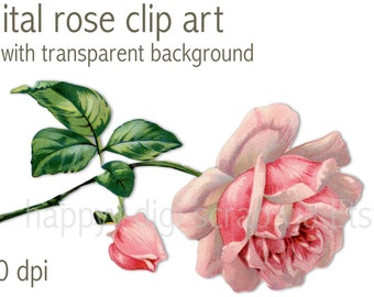 digital rose clip art - instant download - vintage rose png - high resolution - printable - pink - commercial use allowed - scrapbooking