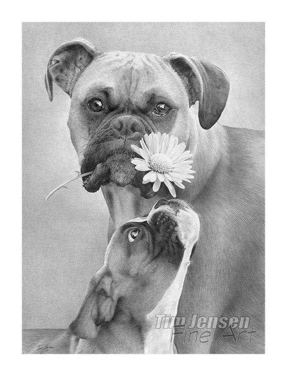 Chiens boxer avec fleur en noir et blanc personnalis - Boxer chien dessin ...