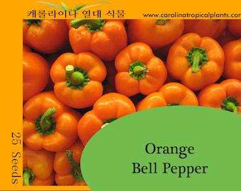 Orange Bell Pepper seeds - 25