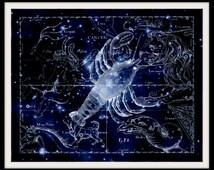 Cancer Constellation, Astronomy, Astrology, Zodiac