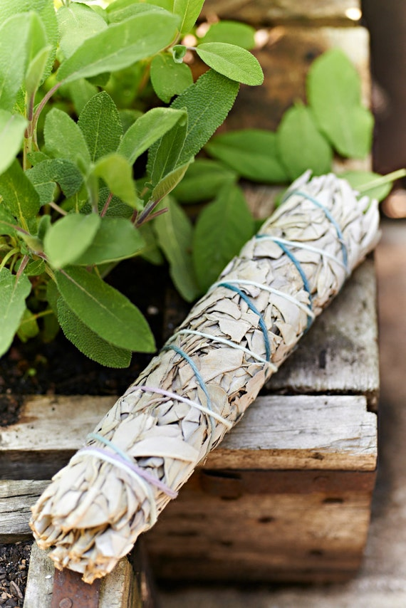 100 % Genuine Australian Sage Smudge Sticks