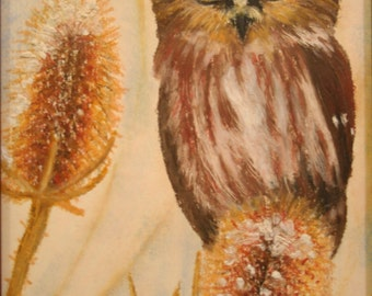 Saw Whet Owl Oil Pastel Drawing