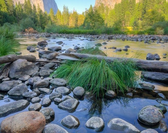 Yosemite Valley View - Yosemite National Park - Landscape Photograph - California - Fine Art Print