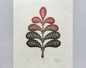 Woodcut Print, Woodblock Print, Frond by Tugboat Printshop