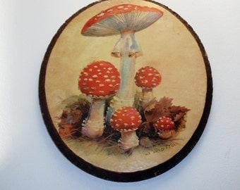 Vintage Wall Plaque, Toadstools / Mushrooms
