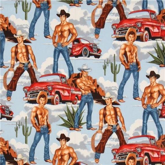 Gay pin up fabric