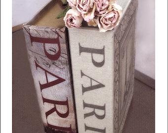 Paris Books Photography, Dreamy Roses Paris Books, Paris Pink Home Decor, Paris Pink Wall Art, Paris Books Photo, Paris Pink Roses Books Art