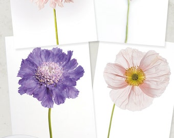 Flower Photo Notecard - Flower Collection of Dahlia, Rose, Poppy, Note Card, Floral Photo Notecard, Stationery, Blank Notecard