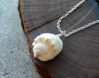 Seashell necklace, mermaid necklace, mermaid jewelry, white shell necklace, beach wedding necklace, bridesmaid gift, simple shell necklace