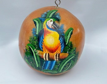 Hand Painted Gourd - Costa Rican Folk Art - Parrot