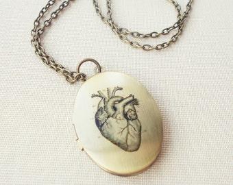 Anatomical Heart Large Locket Necklace, Vintage Pendant, Medical Illustration, Antique Chain,  Whimsical Jewellery