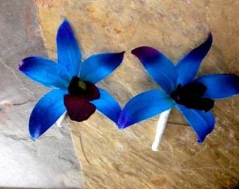 Purple blue orchid boutonniere, dendrobium orchid boutonniere, button hole, galaxy orchid