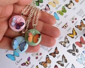 Initial necklace, personalized butterfly necklace. Choose your butterfly.