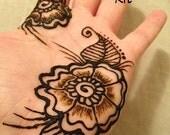 Henna 101 Kit -  Mehndi, body art, cool, teens, bridal, gift for her, girlfriend, birthday, party, stocking stuffer
